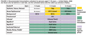 Vaccination Chart From Birth To 10 Years Recommended Immunization Schedules For Persons Aged 0 18