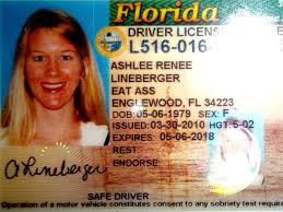 Dmv Relocates To Florida License Unfortunate Locale 6 South On Driver Nbc -