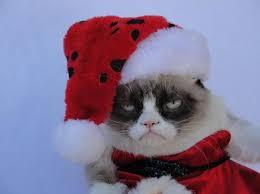 grumpy cat christmas hat. Modren Grumpy Comicsfunny Comics U0026amp Strips Cartoonsgrumpy Catchristmashat Intended Grumpy Cat Christmas Hat A