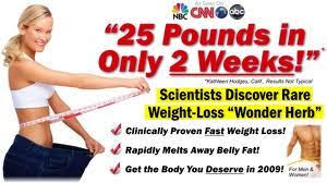 Image result for dieting schemes
