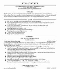 Entry Level Resume Magnificent Gallery Of Strong Resume Samples How To Write A Entry Level Resume