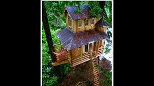 Exotic Tree Houses Exotic Tree Houses Youtube