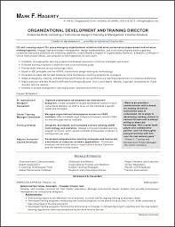 Write Resume Samples Mesmerizing New Registered Nurse Resume Awesome Resume Examples For Customer