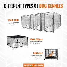 how to pick the best outdoor kennel