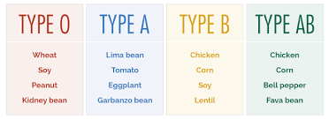 Eating According To Your Blood Type Chart Wheat Free Or Gluten Free What Your Blood Type Tells You
