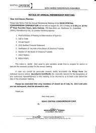 Memo To Board Of Directors Soho Central Condominium Annual Meeting Memo's Opposition to the 49