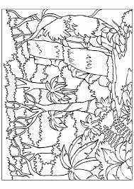 Nature Coloring Pages Forest Waterfall Coloringstar