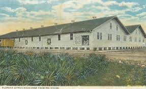 History's mysteries: Burton's Barbershop, voting pioneer, 02/21/19 |  Business | yoursun.com