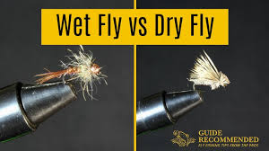 Fly Fishing Fly Identification Chart What Is The Difference Between A Wet Fly Vs Dry Fly Guide