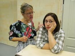Pamplin Media Group - Female 'Odd Couple' to put audience in stitches