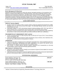 Mechanical Project Manager Resume Sample Resume Work Template