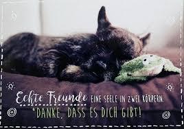 Spruch Postkarte Freundschaft Danke Dass Es Dich Gibt