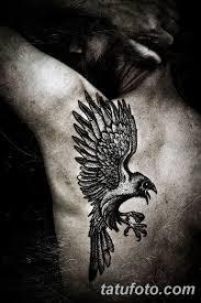 значение тату черный ворон смысл история фото рисунков эскизы факты