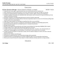 Business Operations Manager Resume Sample Velvet Jobs
