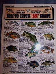 Freshwater Fish Chart Tightline Publications Fishing F W 3 How To Catch Em Bass Freshwater Chart 3