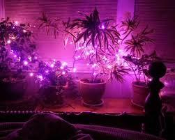 Purple Bedroom Lamps 27 Bedroom Lamps Ideas Newhomesandrewscom