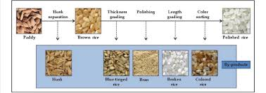 Rice Milling Flow Chart Flow Chart Of Milling Process From Paddy Rice To Polished