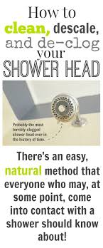 how to clean descale and unclog your shower head naturally