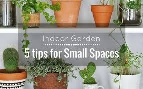 interior architect indoor garden