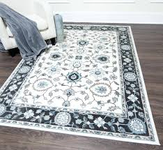 wayfair rugs fascinating gray and white area rug at design hector reviews furniture mart near wayfair rugs