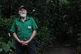 Científico teme que cambios en lluvias afecten ecosistemas de Monteverde -  Ojo al Clima
