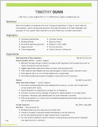 Good Summary For Resume Cool Summary For Resume Examples Example Professional Summary Resume Good