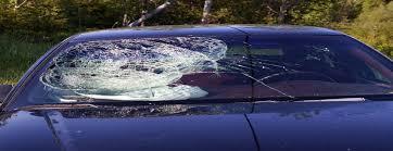 ed windshield