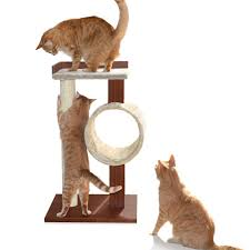 new petfusion modern cat activity tree  scratching post