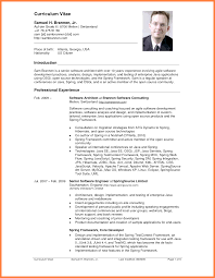 How To Write A Curriculum Vitae 24 How To Write A Professional Curriculum Vitae Bussines Proposal 24 12