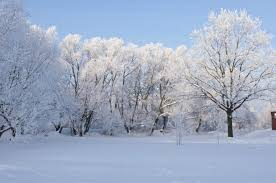 snow backgrounds tumblr. Contemporary Tumblr Download Wallpaper With Snow Backgrounds Tumblr O