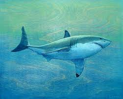 great white shark painting. Exellent Great To Great White Shark Painting E