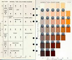 Soil Colors Munsell Color Chart Online Free In 2019