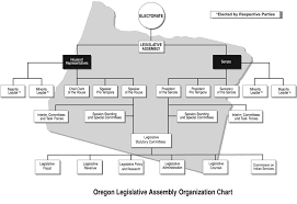 Indian Parliamentary System Chart Citizen Engagement Legislative Body