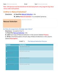 Natural Selection Activity