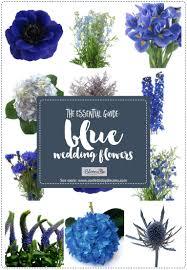 Light Blue Flower Names Essential Blue Wedding Flowers Guide Types Names Seasons