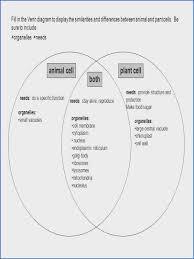Compare Prokaryotic And Eukaryotic Cells Venn Diagram Differences And Similarities Between Prokaryotic Eukaryotic