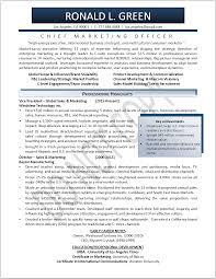 Resume Executive Director Resume