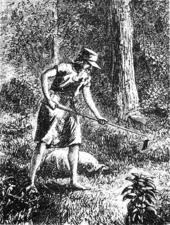 Johnny Appleseed - Wikipedia