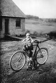 17 Best images about bicyles on Pinterest American pickers Old.