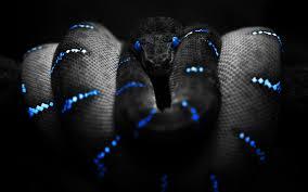 definition enigma dsm s somatic symptom disorder from medical  blue enigma desktop for 18 snake