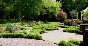 Small Picture Woodland Garden Euphorbia Design