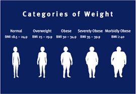 Bmi Are You Really Overweight
