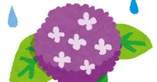 梅雨のイラスト「紫陽花と雨」 | かわいいフリー素材集 いらすとや