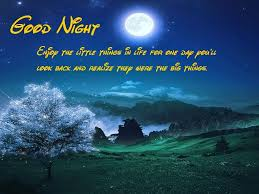 Romantic Good Night Wishes Messages Good Night Sms Quotes