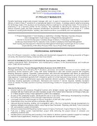 best it project manager sample resume sample resume for project