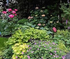 Garden Design Portland Inspiration Lucy Hardiman And Perennial Partners Garden Designer Speaker