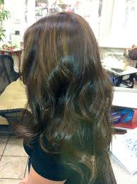 Dark Brown Hair Caramel Highlights I