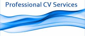 resume review service. Professional cv writing services Alerion Writing Service