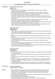 Manager Audit Resume Samples Velvet Jobs