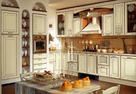 delightful decoration traditional kitchen cabinets house best pictures
